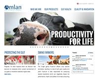 Amlan.com