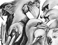Tropicana Illustration