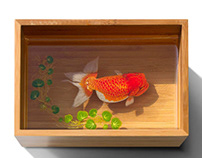 Pastel Painting Gold Fish