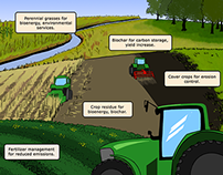 Bioeconomy Institute - Carbon Farm Illustration