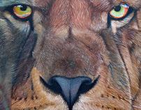 Lion - 2016
