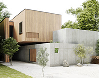 Concrete Box House Visualization