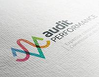 Audit Performance