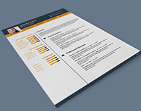 Free 3 in 1 Resume Template for Any Job Opportunity