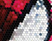 Hexagonal design heroes