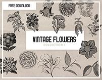 FREE VINTAGE FLOWER GRAPHICS