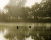 Upon Golden Pond