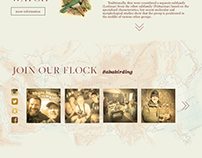 American Birding Association Web Re-Brand
