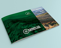 Carpathia   |   GreenFly