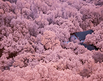 Different Tone of China 12(Infrared Camera)