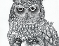 """""""The Owl Chief"""""""