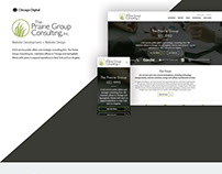 The Prairie Group Consulting- Website Design