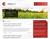 Intranet IntraMult