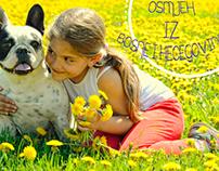 smile from Bosniahercegovina donated by Stefan Zmijanja