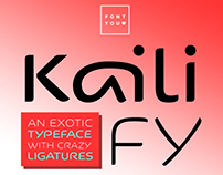 New font KAILI FY