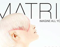 App Design: L'Oreal Matrix B2B booklet