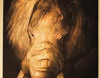 Elephant Etching