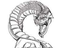 Dragon Sketchs