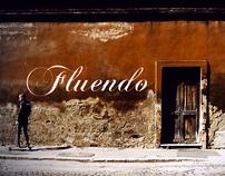 FLUENDO