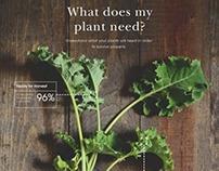 Poster Series | Plantology