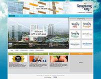 TangCity.com (2010)