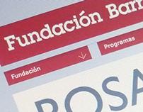 Fundación Barrié Website