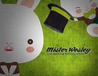 Mister Wesley