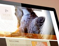 arabian horses Website