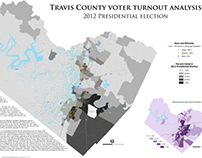 Voter Turnout Analysis