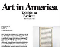 Exhibition Reviews for Art in America