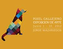 Pixel Callejero