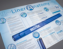 Liner Anatomy Poster and Brochure
