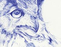 My Memo Diary: Owl