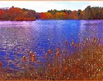 Landscapes of Beauty