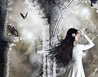 Instants Magiques au Clair de Lune
