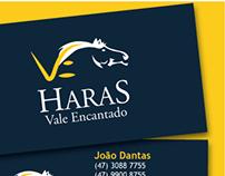 Logo e Papelaria -Haras