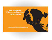 SnowDog Web Development Logo and Business Cards