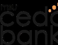 MSU AAF 2009-2010