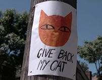 GIVE BACK MY CAT