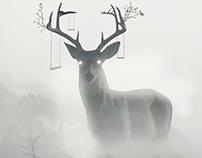 Dreamer Deer