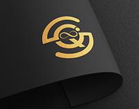 Logo Concept = i + Q + S