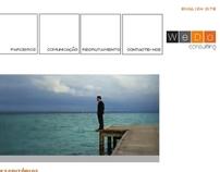Wedo Consulting -  website redesign