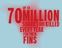 Shark Finning - Extinction is Not an Option!
