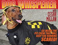 DOG WHISPERER Daytona Dogs DVD packaging