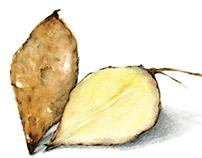 Yacón y Moink Fruit Revista Paula