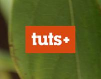Muse Tuts+