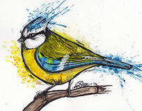 Watercolored birds
