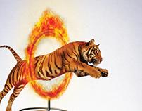 Toy Box - El Salto del Tigre