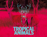 Tropical Animals Logo Restyling