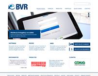 BVR Negócios e Consultoria